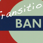 What's the definition of a Transition Bank?